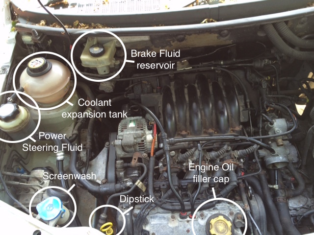 how to check your freelander fluids freelanderspecialist com rh freelanderspecialist com 2004 Land Rover Freelander Timing Belt Land Rover Freelander Problems